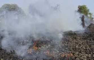 Sepanjang Januari-Februari 2017, 64 Hektare Lahan di Riau Terbakar