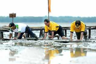 Pembukaan Festival Menongkah Heritage Tahun 2017, Bupati Wardan Nyatakan Ajang Menongkah Sebagai Sebuah Keunikan