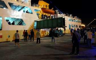 550 Sapi Asal Kupang Tiba di Pelabuhan Dumai