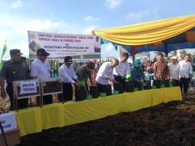 Mentan Bakal Sulap 100 Ribu Hektar Lahan di Riau Jadi Pertanian Organik