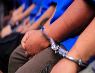 Panen di Kebun Sendiri, 3 Warga Tambusai Ditahan di Polsek Sosa Sumut