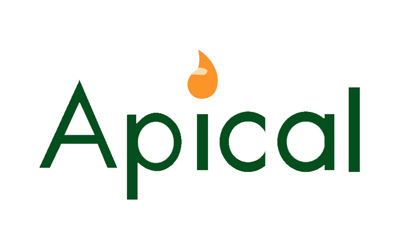 Apical Secures Its First Sustainability-Linked Loan Facilities of US$750 million