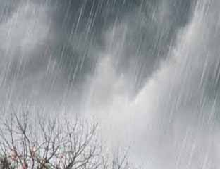 Nihil Hotspot, Riau Berpotensi Diguyur Hujan hingga Malam Nanti